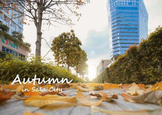 mùa thu tại khu đô thị Sala